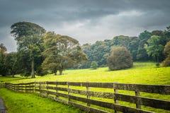Gammalt irländskt staket Arkivbilder
