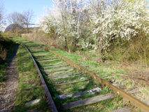 gammalt järnväg spår arkivbild