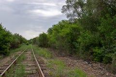 Gammalt järnvägspår för molnig afton bland träd och himmel royaltyfria bilder