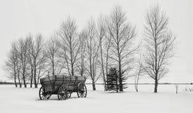 Gammalt kasta vagnsammanträde i snö längs en rad av kala träd i vinter Arkivfoto