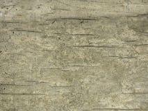 Gammalt knäcka trä för Grunge bakgrund Royaltyfria Bilder