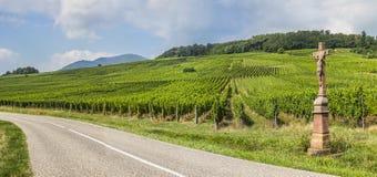 Gammalt kors i vingården, Frankrike Arkivfoto