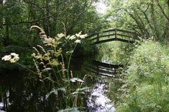 gammalt lantligt för ärke- bro Royaltyfri Foto