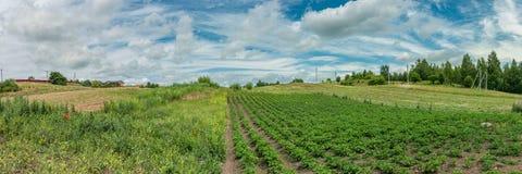 Gammalt lantligt landskap panoramautsikt av privat jordbruksmark royaltyfri foto