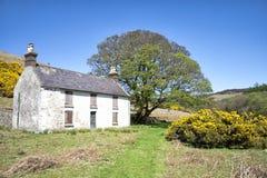 Gammalt lantligt lantbrukarhem i Irland Royaltyfria Foton
