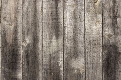 Gammalt målat trä Royaltyfria Foton