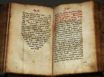 gammalt manuskript Royaltyfria Bilder