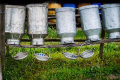 Gammalt mjölka cans som göras av aluminium Royaltyfri Fotografi