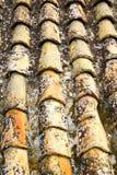 Gammalt moroccan tak i staden Arkivfoto
