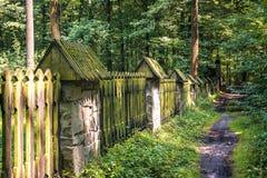Gammalt mossigt staket i skogen fotografering för bildbyråer