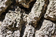 Gammalt murket vaggar strukturen Arkivfoton