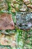 Gammalt murverk som täckas med mossa arkivfoton