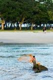 Gammalt netto för fiskarerollbesättning royaltyfri fotografi