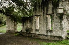 Gammalt och slitet fördärvar, övergiven byggnad som omges av massor av vegetation, och träd arkivbild