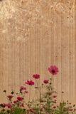 gammalt papper för bakgrundsblommaram Royaltyfri Fotografi