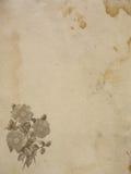 Gammalt papper med buketten av rosor Arkivfoto