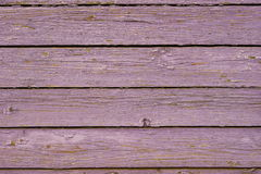 Gammalt purpurt trästaket. Arkivbild