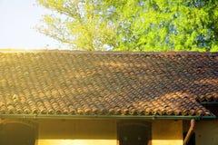 Gammalt rött belagt med tegel tak-, närbild- och gräsplanträd på bakgrund royaltyfri foto