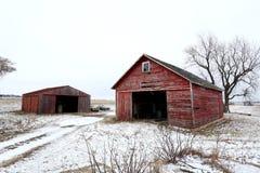 Gammalt rött ladugård och skjul i Illinois Royaltyfria Bilder
