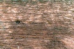 Gammalt ridit ut brunt trä Arkivfoto