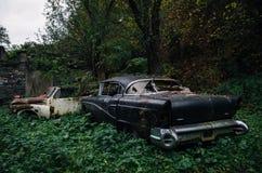 Gammalt rostat retro bilBuick Riviera toppet som överges i trän Royaltyfri Fotografi