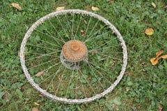 Gammalt rostigt cykelhjul Royaltyfria Foton