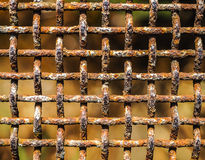 gammalt rostigt för staket arkivbilder