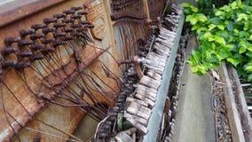 Gammalt rostigt vänstert som ruttnar det trädgårds- särdraget för piano Royaltyfri Bild