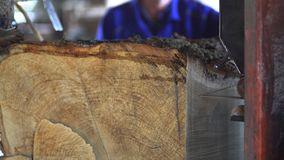 Gammalt sågverk, snitttimmer som ska stigas ombord stock video