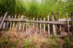 gammalt skrangligt för staket Royaltyfri Bild