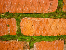 Gammalt smula murverk, mossiga tegelstenar Royaltyfri Foto