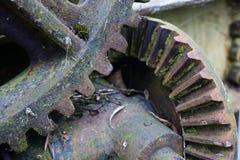 Gammalt som åldras två rostiga smutsiga kugghjul från bron arkivfoto