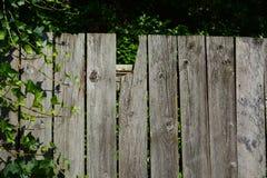gammalt staket Arkivfoton