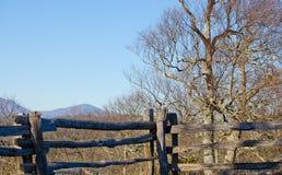 gammalt staket Royaltyfria Foton
