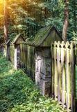 Gammalt staket i skogen arkivfoto