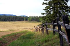 Gammalt staket längs grusvägen arkivbild