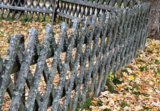Gammalt staket med mossa royaltyfria bilder