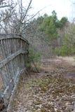 Gammalt staket som täckas med mossa Arkivfoton