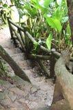 Gammalt staket som täckas med mossa Royaltyfri Foto
