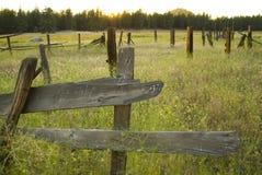gammalt staketfält royaltyfri fotografi