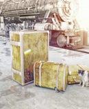 Gammalt tappningbagage Arkivfoto
