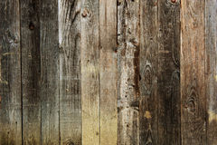 gammalt texturträ Royaltyfria Foton