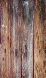 gammalt texturträ Arkivfoto