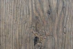 gammalt texturträ royaltyfri bild