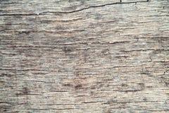gammalt texturträ Brun närbild royaltyfri fotografi