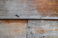 gammalt texturträ för bakgrund royaltyfri fotografi