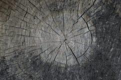 gammalt texturträ för bakgrund Top beskådar Arkivbild
