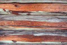 gammalt texturträ gammala paneler för bakgrund Royaltyfri Foto