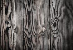 gammalt texturträ gammala paneler för bakgrund Royaltyfri Fotografi