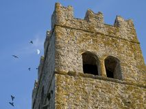 gammalt torn Arkivbilder